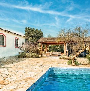 Awesome Home In Jerez De La Frontera W/ Outdoor Swimming Pool, Wifi And 8 Bedrooms photos Exterior