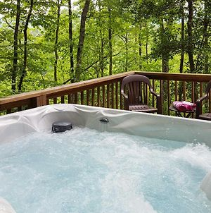 Natures Retreat With Hot Tub - 7 Mi To Bryson City photos Exterior