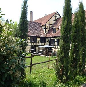Maison De Vacances Alsace - Ferienhaus Elsass - Holiday House Alsace photos Exterior