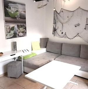 Apartment With 2 Bedrooms In Antibes With Enclosed Garden And Wifi 800 M From The Beach photos Exterior