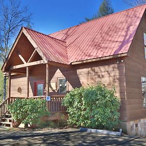 A Bear Moment #112 By Aunt Bug'S Cabin Rentals photos Exterior