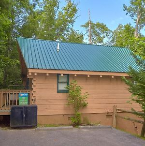 Foxy Lady #1531 By Aunt Bug'S Cabin Rentals photos Exterior