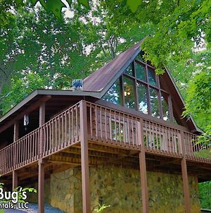 A Secluded Retreat #216 By Aunt Bugs Cabins photos Exterior