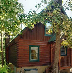 Buddy Bear #249 By Aunt Bug'S Cabin Rentals photos Exterior