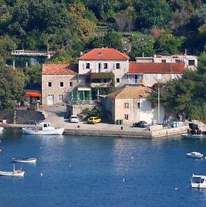 Apartments And Rooms By The Sea Molunat, Dubrovnik - 2139 photos Exterior