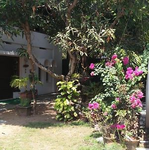 J Thomas Homestay Fort-Kochi photos Exterior