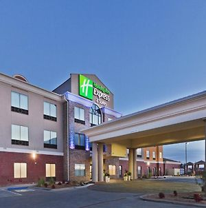 Holiday Inn Express & Suites Brownfield photos Exterior
