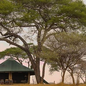 Honeyguide Tarangire Camp photos Exterior