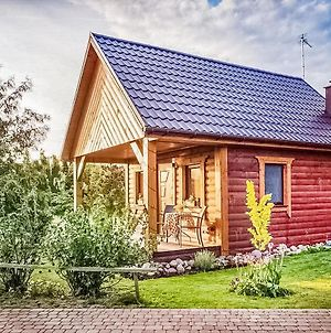 Beautiful Home In Sierakow W/ Outdoor Swimming Pool, Wifi And 1 Bedrooms photos Exterior
