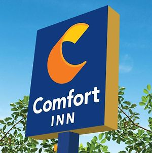 Comfort Inn Blackpool Gresham photos Exterior