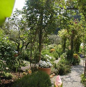 Adorable Tuscan Cottage With Beautiful Garden Just Outside Lucca, Sleeps 4 photos Exterior