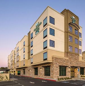 Homewood Suites By Hilton Belmont photos Exterior