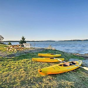 Oceanfront Sullivan Cottage On 6 Acres With Kayak! photos Exterior