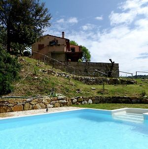 Lovely Holiday Home In Panzano With Swimming Pool photos Exterior