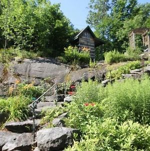 Gregory Bay On Lake Rosseau~Family Friendly With Bunkie & Boathouse photos Exterior