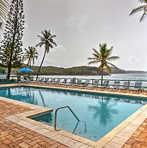Bolongo Bay Oceanfront Condo With Community Pool! photos Exterior