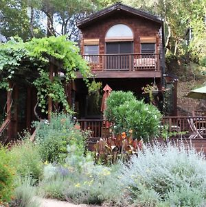 Charming House With Private Pool In Beautiful Location, Sonoma House 1008 photos Exterior