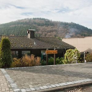 Stylish Holiday Home Near Winterberg With Private Sauna House, Terrace And Garden photos Exterior