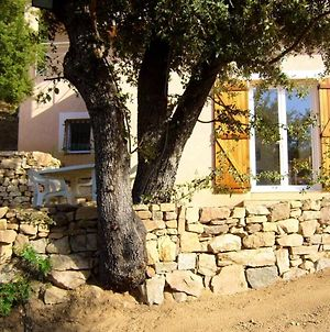 House With One Bedroom In Alata With Wonderful Sea View Furnished Garden And Wifi 8 Km From The Beach photos Exterior