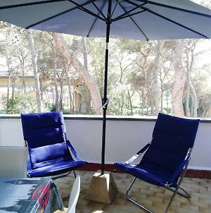 Studio In Castiglioncello With Wonderful Sea View Shared Pool And Enclosed Garden 400 M From The Beach photos Exterior