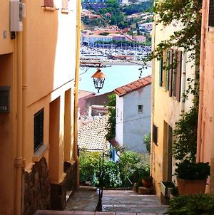 Studio In Banyulssurmer With Furnished Terrace And Wifi 300 M From The Beach photos Exterior