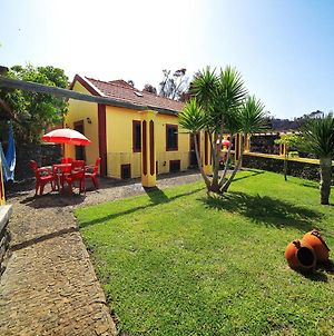 Studio In Ponta Do Pargo With Wonderful Sea View Furnished Garden And Wifi 20 Km From The Beach photos Exterior