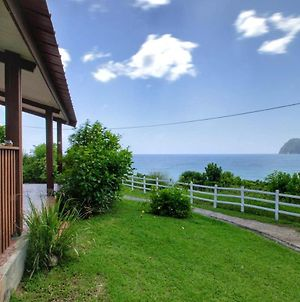 House With 2 Bedrooms In Le Diamant, With Wonderful Sea View, Enclosed Garden And Wifi - 50 M From The Beach photos Exterior