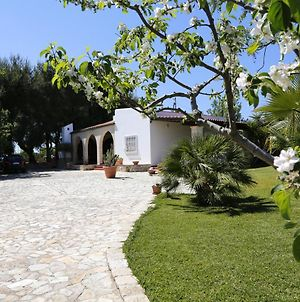 House With 2 Bedrooms In San Vito Dei Normanni With Enclosed Garden 9 Km From The Beach photos Exterior