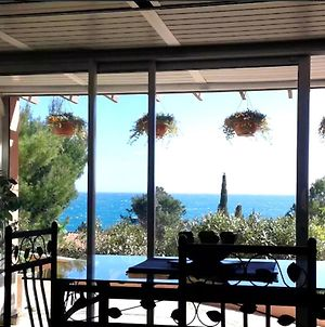Studio In Collioure With Wonderful Sea View Enclosed Garden And Wifi 400 M From The Beach photos Exterior
