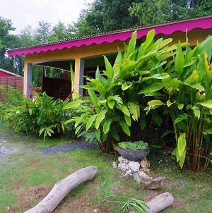 Holiday Home Sainte-Anne, Guadeloupe photos Exterior