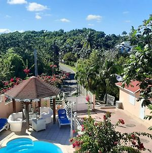 Apartment With One Bedroom In Sainte Anne With Wonderful Mountain View Shared Pool Balcony 6 Km From The Beach photos Exterior