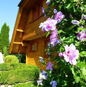 House With 3 Bedrooms In Gornja Voca With Wonderful Mountain View Enclosed Garden And Wifi photos Exterior