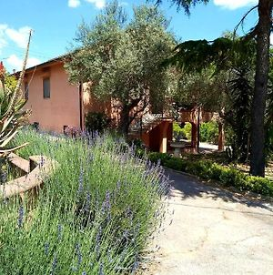 Villa With One Bedroom In Caltanissetta With Wonderful City View Enclosed Garden And Wifi 60 Km From The Beach photos Exterior