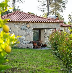 House With One Bedroom In Vilar De Ferreiros With Wonderful Mountain View Shared Pool Enclosed Garden photos Exterior