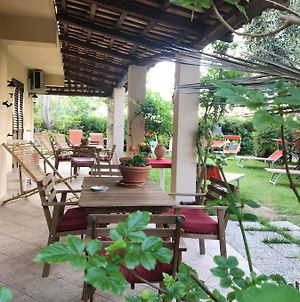 House With One Bedroom In Provincia Di Vibo Valentia With Shared Pool Enclosed Garden And Wifi photos Exterior