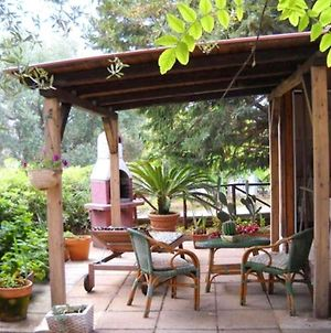 Bungalow With 2 Bedrooms In Marina Di Camerota With Enclosed Garden And Wifi 60 M From The Beach photos Exterior
