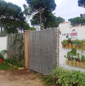 House With One Bedroom In Chiclana De La Frontera With Wifi photos Exterior