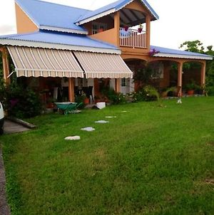 House With 2 Bedrooms In Saint Anne With Enclosed Garden And Wifi 3 Km From The Beach photos Exterior