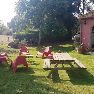 House With 3 Bedrooms In Borgo With Enclosed Garden And Wifi 5 Km From The Beach photos Exterior