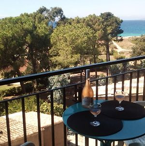 Apartment With One Bedroom In Calcatoggio With Wonderful Sea View And Furnished Balcony 300 M From The Beach photos Exterior
