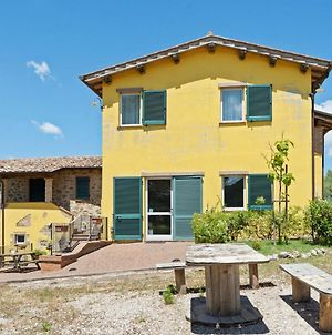 Scenic Holiday Home In Torgiano With Swimming Pool photos Exterior