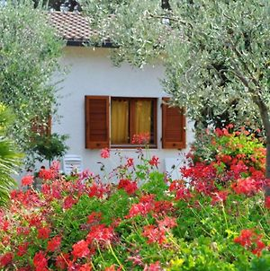 House With 3 Bedrooms In Lacona With Furnished Terrace 100 M From The Beach photos Exterior