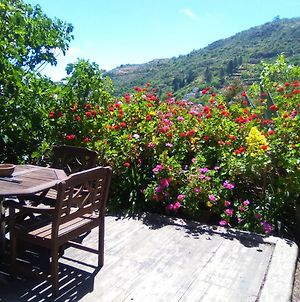 House With One Bedroom In Las Lagunetas Vega De San Mateo With Wonderful Mountain View Furnished Terrace And Wifi 30 Km From The Beach photos Exterior