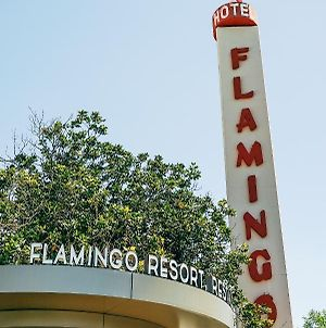 Flamingo Conference Resort & Spa photos Exterior