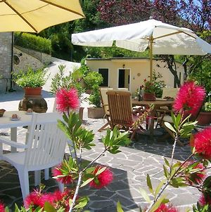Apartment With One Bedroom In Assisi With Shared Pool And Wifi photos Exterior