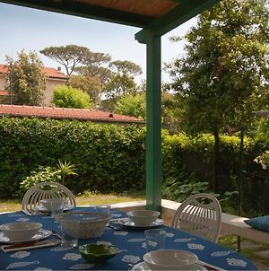 House In Marina Di Pietrasanta With Large Garden 300 Meters From The Sea photos Exterior