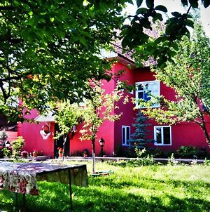 Gabala Daily Rent photos Exterior