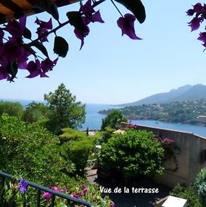 Studio In Theoulesurmer With Wonderful Sea View Furnished Terrace And Wifi 400 Km From The Beach photos Exterior