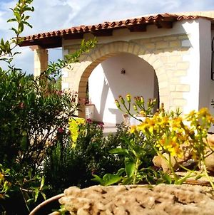 House With 2 Bedrooms In Balestrate With Wonderful Mountain View Furnished Garden And Wifi 1 Km From The Beach photos Exterior