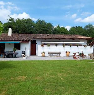 Apartment With One Bedroom In Saintpeesurnivelle With Wonderful Mountain View Enclosed Garden And Wifi photos Exterior